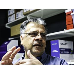 Nader Sheibani headshot