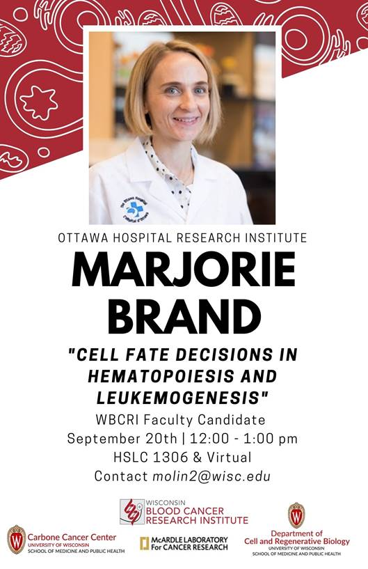 """welcomes you to attend a seminar on Monday, September 20th, at 12:00PM in HSLC 1306. Dr. Marjorie Brand will be presenting on """"Cell fate decisions in hematopoiesis and leukemogenesis""""."""
